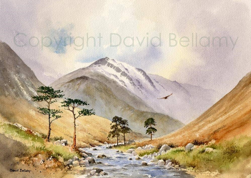 David Bellamy Lake District